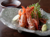 Ginza Takenoan Main Store_Gasu-ebi Shrimp (from Fukui), offering delightfully rich, umami-filled (pleasant savory) flavors and creaminess surpassing that of northern sweet shrimp