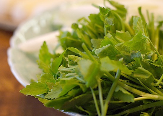 Japanese Parsley