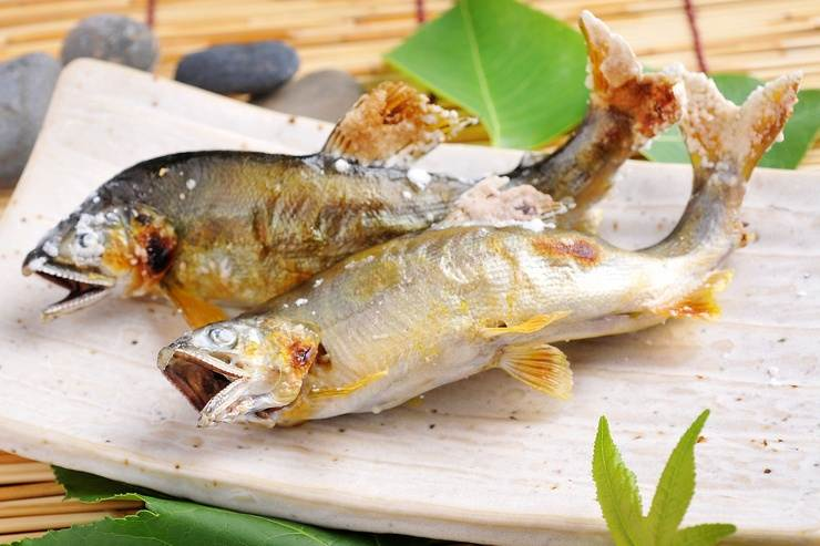 Ayu. Japan's sweet river fish.